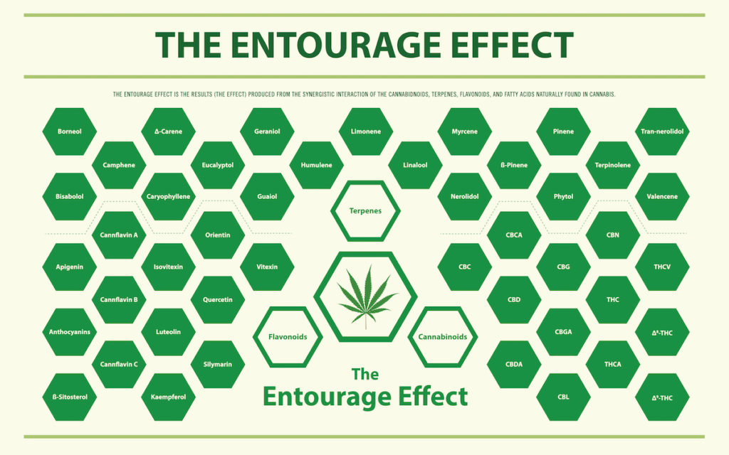 The Entourage Effect of THC and CBD Together